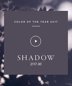 Benjamin Moore 2017 Color of the Year Shadow