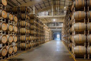 barrel room in a winery housing hundreds of wine barrels for aging